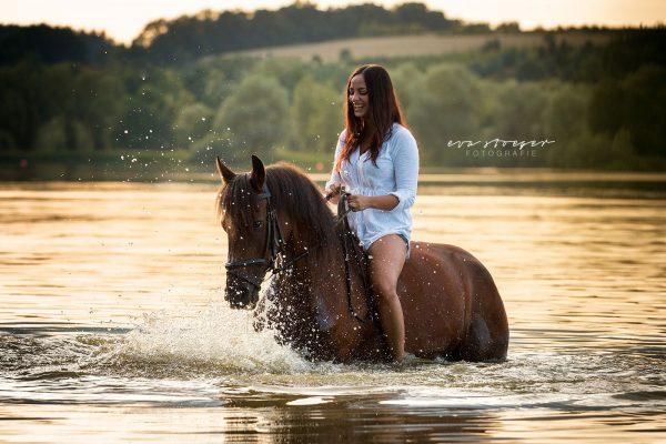 Tierfotografie Eva Stöger Pferdefotografie Traber