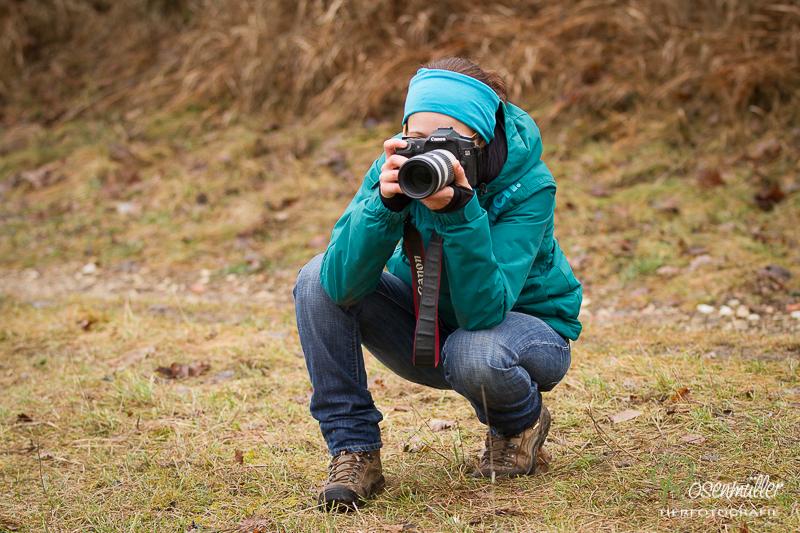 Tierfotografie Eva Stöger Pferdefotografie Hundefotografie